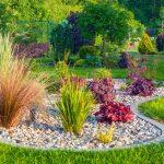 Czy dasz radę sam zaprojektować i założyć ogród?