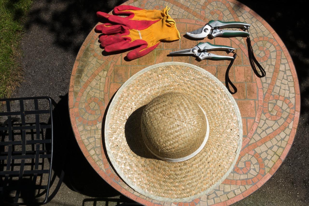 Dwa kapelusze, rękawiczki i sekator