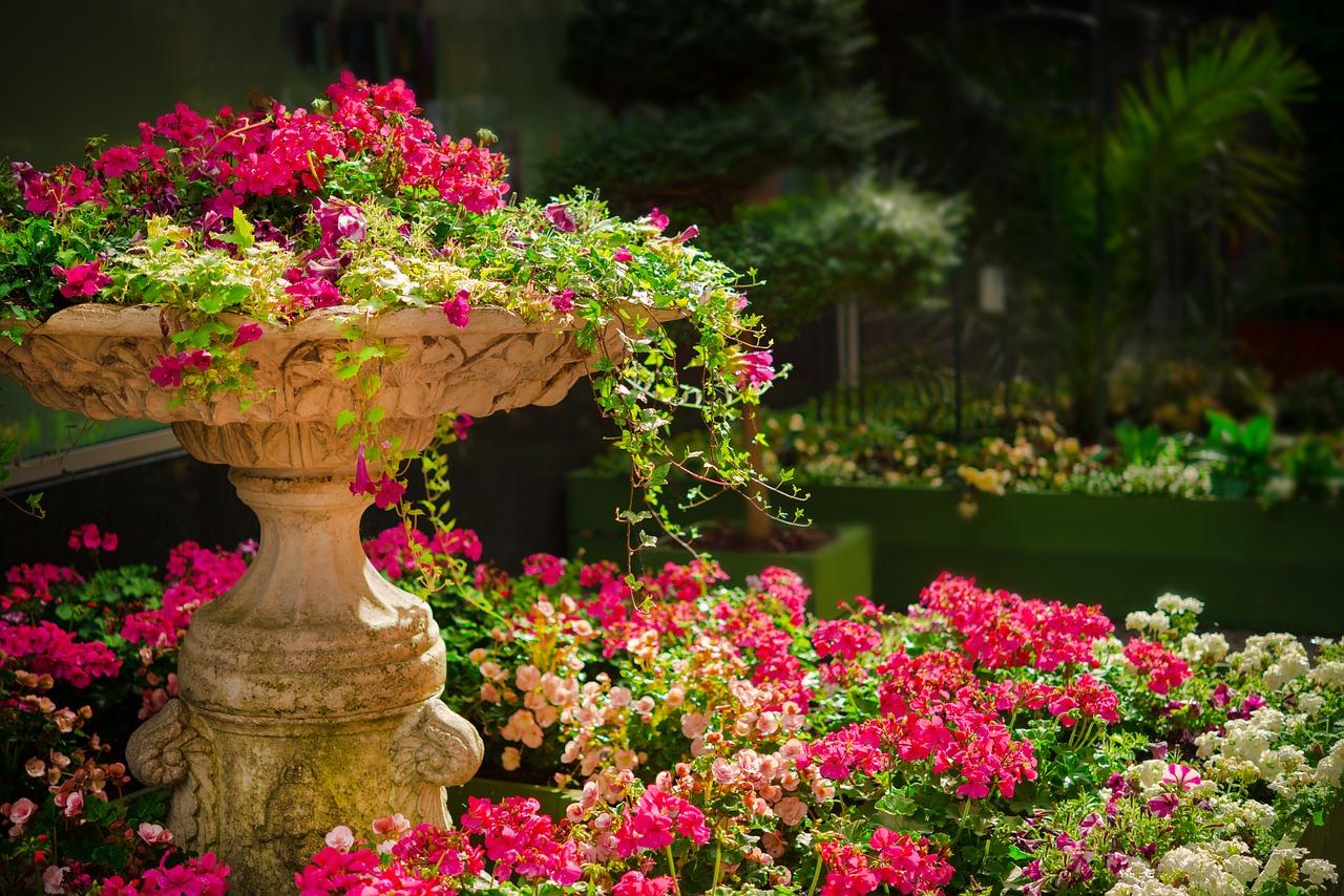 Letnia kompozycja kwiatowa