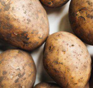 Uprawa ziemniaka na działce – wszystko co musisz wiedzieć