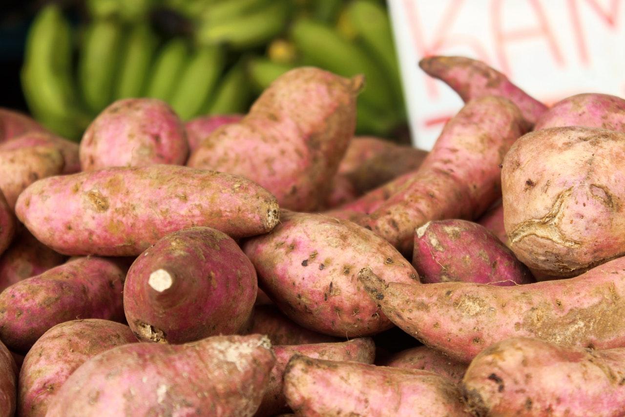 Najchętniej wybierane odmiany ziemniaków w Polsce