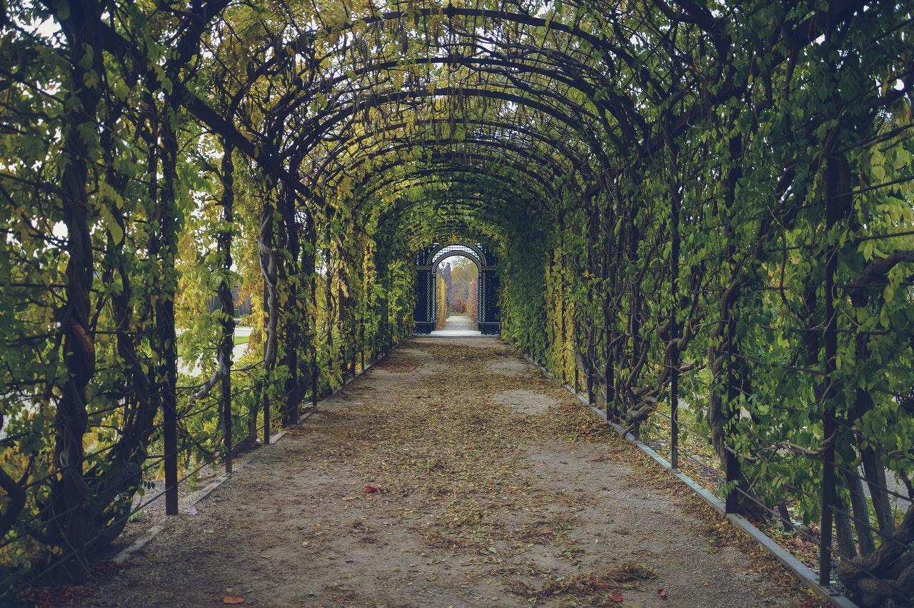 Projektowanie ogrodów - na co zwrócić uwagę?