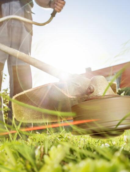 Czym i jak kosić trawę? Urządzenia do koszenia trawy