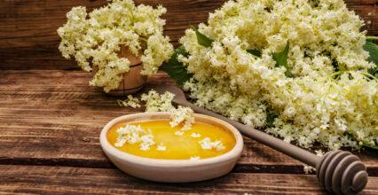 Jadalne kwiaty – 20 propozycji, kwiatów, które możesz zjeść!