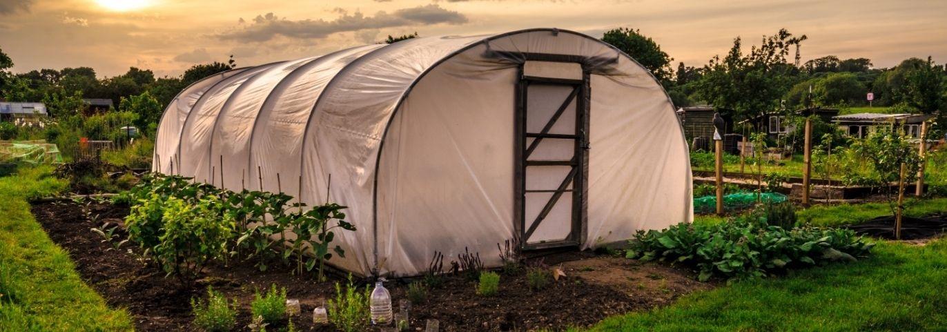 Jak przygotować ogród na zimę?